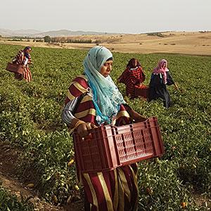 produit-agro-innovant2